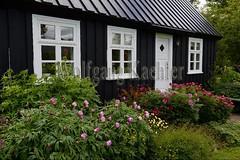 40082234 (wolfgangkaehler) Tags: 2017 europe european iceland icelandic island northiceland akureyri akureyriiceland northerniceland city botanicalgarden botanicalgardens botanicgarden botanicgardens northernmost