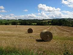 Summer (Sharon B Mott) Tags: summer haybales fields farmland farm sky bluesky landscape august clouds