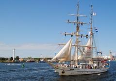Hansesail Rostock (Explore) (♥ ♥ ♥ flickrsprotte♥ ♥ ♥) Tags: schiff rostock hansesail2017 urlaub ostsee greif segel segelschiff männer explore ~401