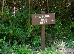 Terrapin Nature Area, Stevensville MD 27 (Larry Miller) Tags: naturepark conservation chesapeakebay maryland 2017
