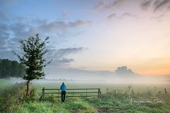 Enjoying sunrise (Ellen van den Doel) Tags: grass autumn zonsopkomst sunrise mist overflakkee end fall september herfst ochtend morning summer 2017 lucht field tree outdoor goeree sky fog clouds selfie zomer fence dirksland zuidholland nederland nl