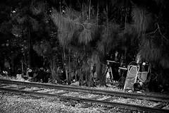 Other side of the tracks (John Ilko) Tags: 500px fihifilm monochromeg xe2 1855mm junk florida blackwhite