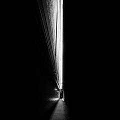 Through the Dark and Narrow