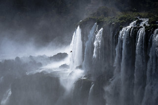 The lost world...continued. Iguacu Waterfalls.  Foz do Iguacu.  Parana, Brasil