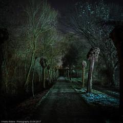 Alone in the dark (H.Roebke) Tags: landscape landschaft canon1635mmf28lisii canon7dmkii lightroom nachtaufnahme nightshot 2015 hannover longtimeexposure langzeitbelichtung stadionbad