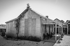 Corrugated Iron and Timber Shacks - Event Area. (Merrillie) Tags: tin corrugated iron building historic old australia vintage rural orange nsw historical monochrome timber country orangensw blackandwhite rustic newsouthwales