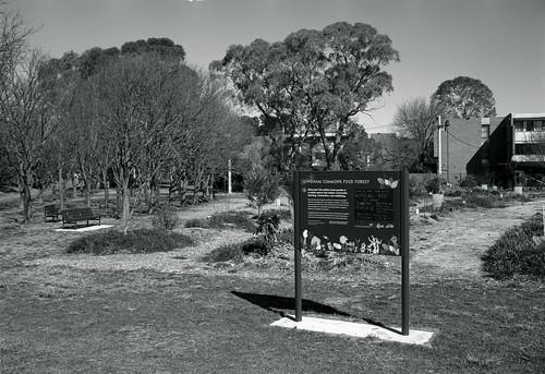 Frame 19.jpg