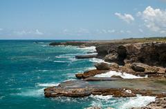 Barbados coastline (Jim Nicholson) Tags: flatfield saintlucy barbados bb nikon d300 nikond300
