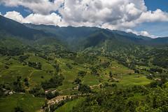 Vietnam 2017 (markbeyer) Tags: sky scenery nikon d600 vietnam 2017 nature rice fields clouds