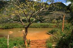 La maison bleue (renécarrère) Tags: cuba viñales veguero tabac paysagecubain