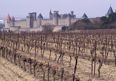 Medieval (Francoise100) Tags: 11 cepsdevigne vigne geschichte patrimoine history histoire mood atmosphere cité unescoworldheritagesite historicfortifiedcityofcarcassonne carcassonne france frankreich vines middle age aude languedoc occitanie oc fortified gloomy skyline fortifications towers creneles