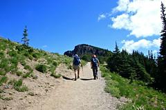 Hikers going to Dege Peak (Bella Lisa) Tags: mountrainiernationalpark sourdoughmountains washington sunrisevisitorcenter degepeak mtrainier emmonsvista curlyeverlasting wildflowers wilderness nationalpark washingtonstate sunsetpoint hiking emmonsglacierevergreens pines pinetrees