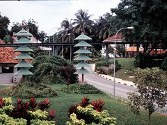 1994_Singapore_2016-07-18_Photo_035 (Matthias & Paula) Tags: singapore sentosa kuala lumpur malaysia cameron highlands zoo japanese gardens