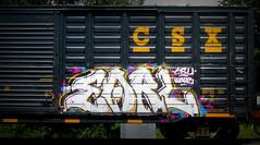 earl '17 (timetomakethepasta) Tags: earl freight train graffiti art boxcar csx benching selkirk new york photography csu