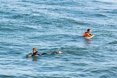 ArchitectGJA-7647.jpg (ArchitectGJA) Tags: lighthousepoint surfing californiababy wetsuit california xcel lighthousefield beach marineanimals coast cliffs waves streetphotography santacruz surfingsteamerlane brydenm oneill steamerlane montereybay