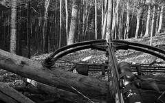 crossbow crossbowhunting hunting deerhunting black white