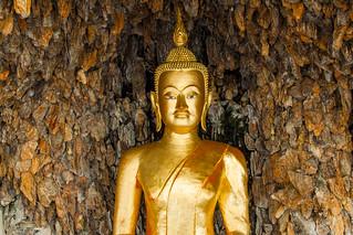 The Wat Chanasongkhram Ratchaworamahawihan Buddha