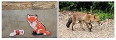 He Was Only A Fox (Mabacam) Tags: 2017 penge streetart ceramic tile ceramicfox chinagirl fox nature animal urban urbanfox london