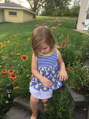 c2017 August 17, Ava Grace Playing iPhone 6s (King Kong 911) Tags: blocks rockinchair toys fun