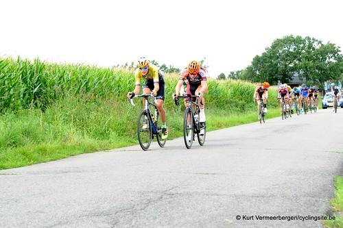 Omloop Vlaamse gewesten (348)