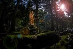 ZAZEN (座禅) (/\ltus) Tags: zazen zen eiheiji temple fukuiken japan hdr internalhdr japanhdr sony a6300 buddhism 座禅 ぜん 永平寺 福井県 日本 日本hdr ソニ 禅