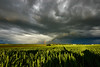 out in the fields, after the rain (Guido F.J. Ehlers - gfje) Tags: sonyα900 sony sal1635z field feld wolken clouds sunset sonnenuntergang regen rain rainbow regenbogen sky landscape