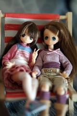 DSC03319 (myshax86) Tags: azone picconeemo himeno himeko