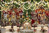 Balarama Purnima 2017 - ISKCON London Radha Krishna Temple Soho Street - 07/08/2017 - IMG_4289 (DavidC Photography 2) Tags: 10 soho street radhakrishna radha krishna temple hare krsna mandir london england uk iskcon iskconlondon internationalsocietyforkrishnaconsciousness international society for consciousness summer monday 07 7th august 2017 lord balarama jayanti purnima appearance day festival deity murti murtis darshan arati room templeroom altar shrine