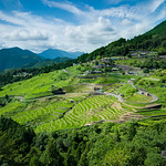 General view of Maruyama Senmaida (Thousands of rice fields) (丸山千枚田)