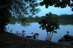 Atardecer. Lago Taquaral (luisarmandooyarzun) Tags: lake lago fotografía photography nikond3100 nikon panoramica panorama paisaje landscape sunset atardecer campinas brazil brasil