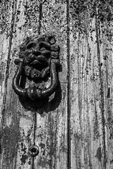 IMG_8368 (SalvoGulisanoFotografo) Tags: selinunte sicily greektemple