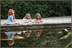 Besuch bei Familie Schildkröte ... (Kindergartenkinder) Tags: grugapark essen gruga park nrw kindergartenkinder annette himstedt dolls sanrike garten annemoni milina tivi schildkröte