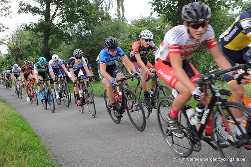 Omloop Vlaamse gewesten (338)