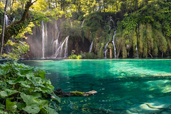 Plitvice Lakes National Park (mesocyclone70) Tags: lake lakes croatia blue emerald smaragd waterfall waterfalls green light beautifull park trees tree water foliage travel colour color colors colours outdoor outdoors rock rocks summer lakeside awesome stream waterscape landscape landscapes scenic scenery scenics scene scenicsnotjustlandscapes plitvice europe creek depth