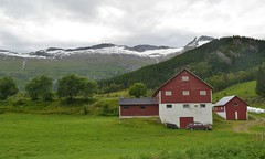 Hill farm, Norway (Williams5603) Tags: norway fjord sognefjord sogn farm hill sognefjorden nigardsbreen