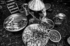 On a Vietnamese market in the Mekong delta (rvjak) Tags: vietnam asie asia southeast market marché fish poisson noir blanc black white bw hat chapeau nikon d750 sudest