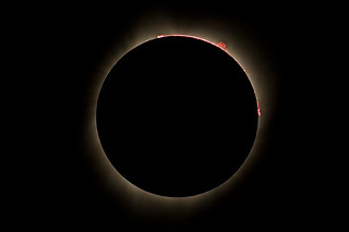 Eclipse 2017 Bailey's Beads And Prominence 1149