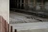 end of the tracks... (Nicholas Eckhart) Tags: america us usa cleveland subway tour abandoned detroitsuperior veterensmemorial bridge ohio oh 2017
