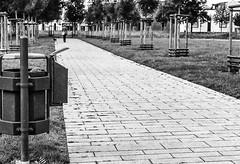 "Mülleimer überall ...-Trash Can erverywhere-B&W (Siggi-Dee) Tags: ""leica elmar 50mm f28 35mm b26w blackandwhite color digital film japan kodak leica leicam6 leicam9 leicamp m9 tokyo voigtlander street rangefinder leicam5 wetzlar solms"