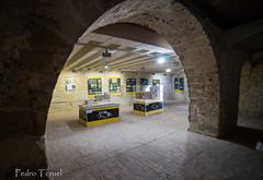 castillo de Vélez Blanco (pedrojateruel) Tags: vélezblanco maqueta castillo