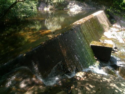 Wang Chung Stream - Dam 2