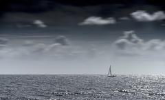Almost home (Frank ) Tags: norway sailing ocean norge travel bigstopper littlestopper lee filter ps frnk europe sonya7r canonef70200mml home sea water aqua nautic colorline superspeed catamaran sail topf25 topf50 topf100 topf150
