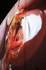 Un bébé poulet est né (A Baby Chicken is Born) (JB by the Sea) Tags: montreal montréal quebec québec canada september2017 urban publicart videoinstallation expo67live quartierdesspectacles placedesarts nationalfilmboardofcanada expo67