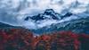 Southern Autumn (Valter Patrial) Tags: montanha paisagem folhas árvores vermelhas amarelas neve azul mountain landscape sheets trees reds yellow blue snow patagonia ushuaia