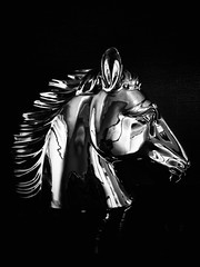 """Employees like horses, the boss should stop whipping the dead horse sometime, (mutually benefiting all of you)""  #horse #analogy #display #stilllife #stilllifephotography #blackandwhite #blackandwhitephoto #bw #monochrome #monochromephotography (victor_erdi) Tags: horse analogy display stilllife stilllifephotography blackandwhite blackandwhitephoto bw monochrome monochromephotography"