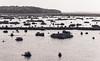 Scarborough Marsh (naxtell) Tags: scarborough marsh maine canoneos5dmkll canon5dmkii canonef70200mmf28lis