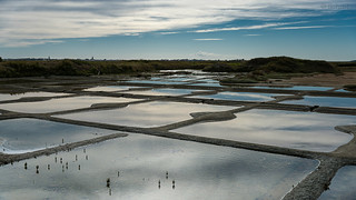 Reflections on the salt marshes