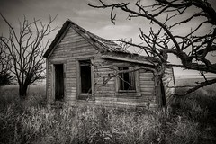 Departed (Chris Lakoduk) Tags: departed old house shack building architecture home abandoned derelict destroyed gone dismantled deteriorated withered creepy trees grass reeds windows door siding roof blackandwhite image sad washingtonstate