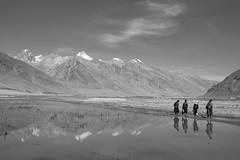 Zanskar, India (Chris Hooton) Tags: chrishooton chrishootonphotography chrishootonnewzealand nikon nikond3100