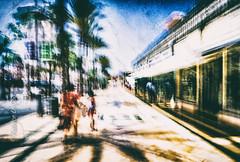 Brisée contre l'écueil de la vie (Fabrice Le Coq) Tags: vert bleu ciel arbres rue street piéton silouhète batiment route flou bougé fabricelecoq